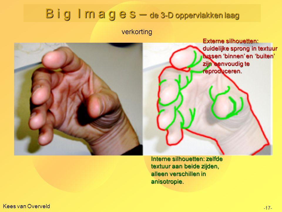 Kees van Overveld verkorting -17- B i g I m a g e s – de 3-D oppervlakken laag Externe silhouetten: duidelijke sprong in textuur tussen 'binnen' en 'b