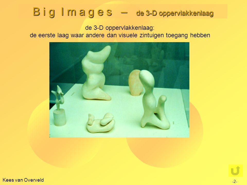 B i g I m a g e s – de 3-D oppervlakkenlaag Kees van Overveld de 3-D oppervlakkenlaag: de eerste laag waar andere dan visuele zintuigen toegang hebben