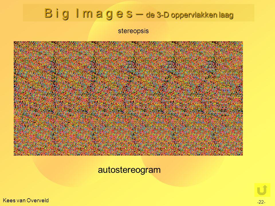 Kees van Overveld stereopsis -22- B i g I m a g e s – de 3-D oppervlakken laag autostereogram