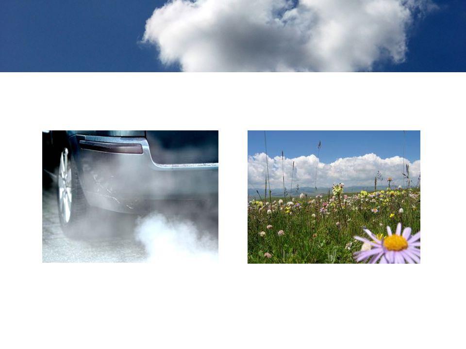 Bij het verbranden ontstaan vervuilende gassen, zoals koolstofdioxide en stikstofdioxide.