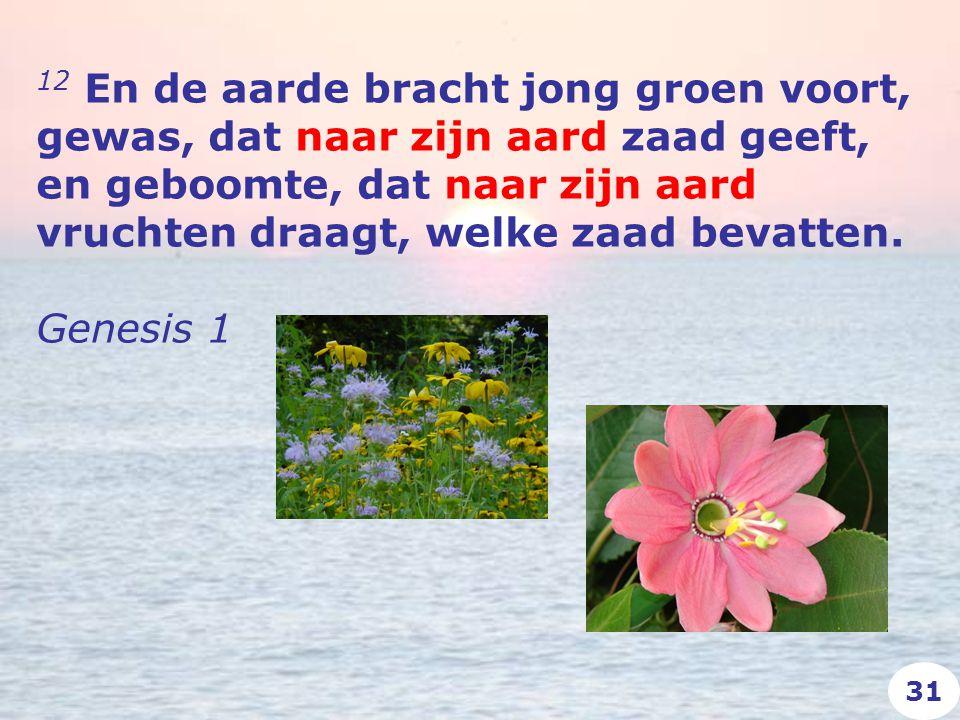 12 En de aarde bracht jong groen voort, gewas, dat naar zijn aard zaad geeft, en geboomte, dat naar zijn aard vruchten draagt, welke zaad bevatten.