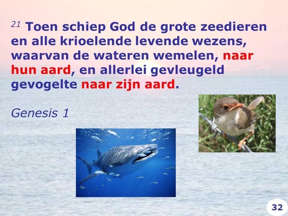 21 Toen schiep God de grote zeedieren en alle krioelende levende wezens, waarvan de wateren wemelen, naar hun aard, en allerlei gevleugeld gevogelte naar zijn aard.