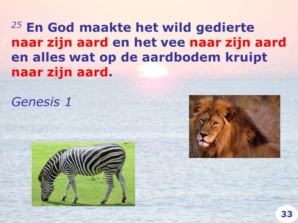25 En God maakte het wild gedierte naar zijn aard en het vee naar zijn aard en alles wat op de aardbodem kruipt naar zijn aard.