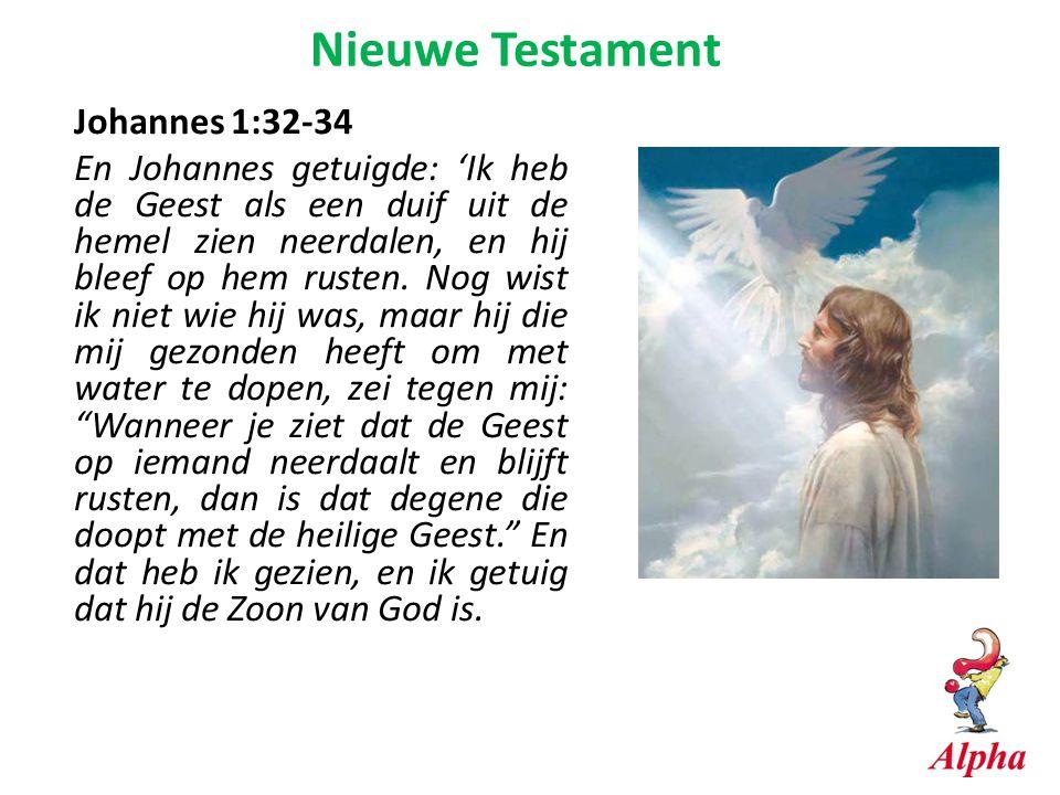 Johannes 1:32-34 En Johannes getuigde: 'Ik heb de Geest als een duif uit de hemel zien neerdalen, en hij bleef op hem rusten. Nog wist ik niet wie hij