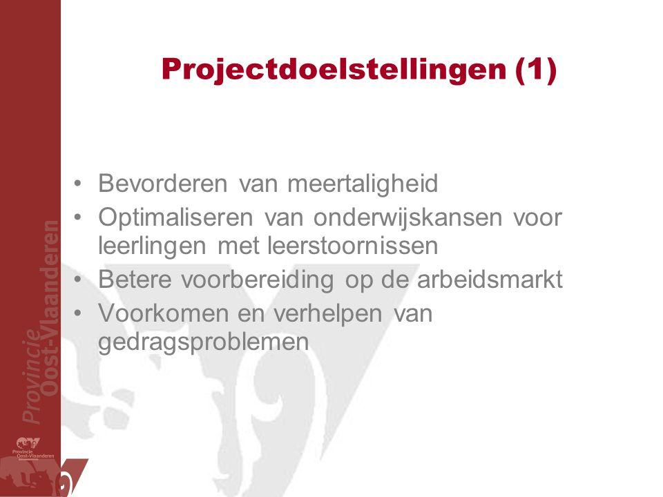 Projectdoelstellingen (1) Bevorderen van meertaligheid Optimaliseren van onderwijskansen voor leerlingen met leerstoornissen Betere voorbereiding op de arbeidsmarkt Voorkomen en verhelpen van gedragsproblemen