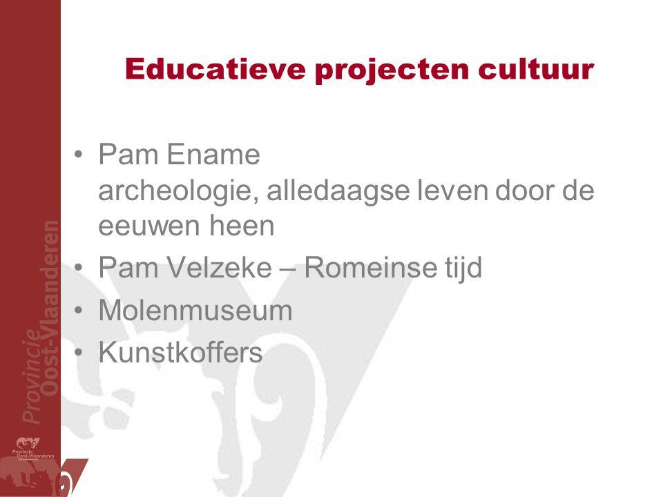 Educatieve projecten cultuur Pam Ename archeologie, alledaagse leven door de eeuwen heen Pam Velzeke – Romeinse tijd Molenmuseum Kunstkoffers