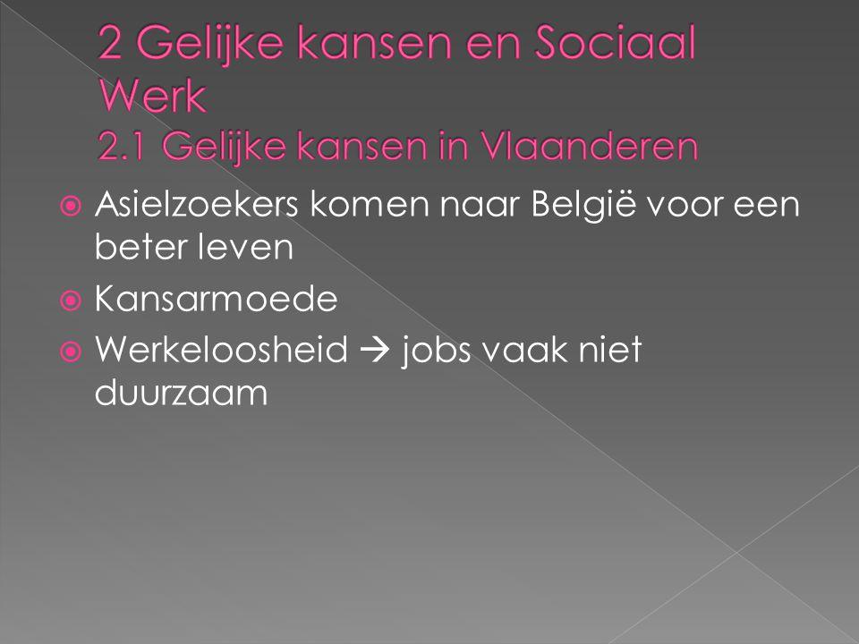  Asielzoekers komen naar België voor een beter leven  Kansarmoede  Werkeloosheid  jobs vaak niet duurzaam