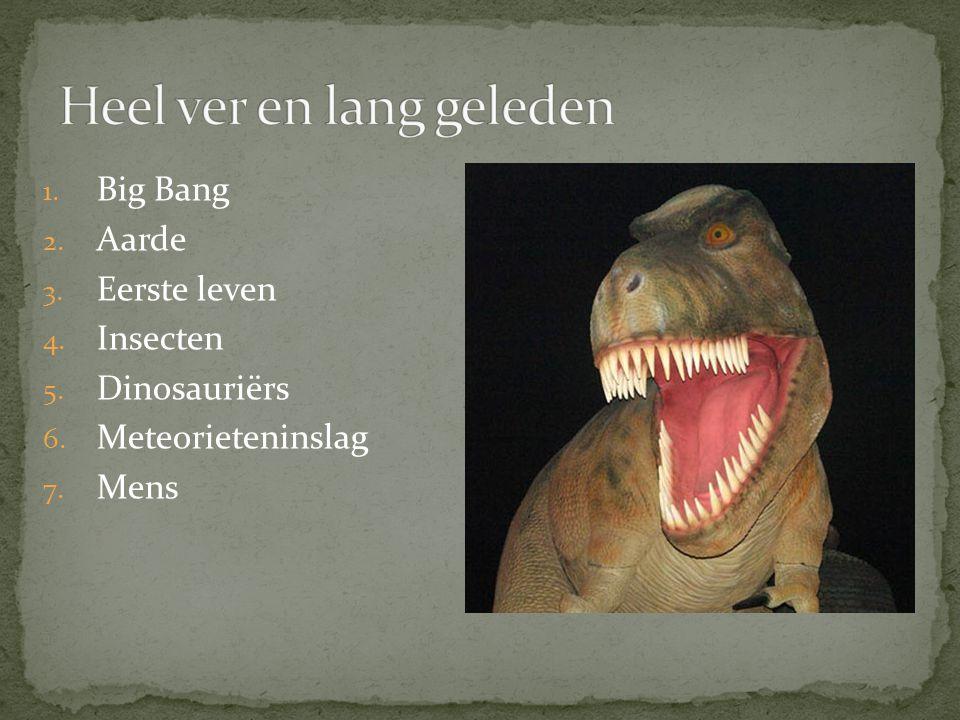 1. Big Bang 2. Aarde 3. Eerste leven 4. Insecten 5. Dinosauriërs 6. Meteorieteninslag 7. Mens