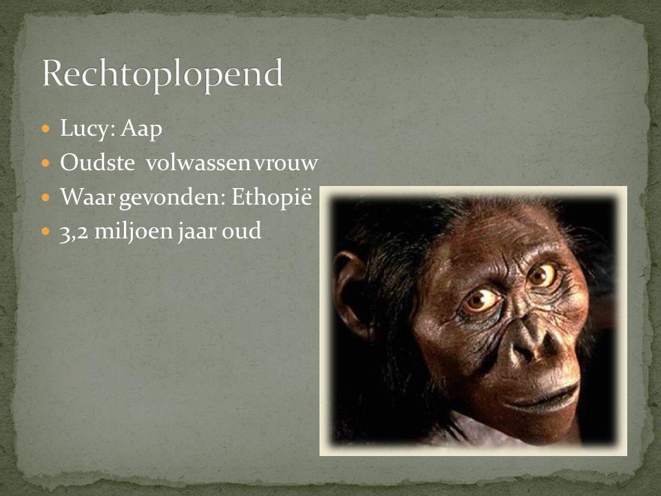 Lucy: Aap Oudste volwassen vrouw Waar gevonden: Ethopië 3,2 miljoen jaar oud