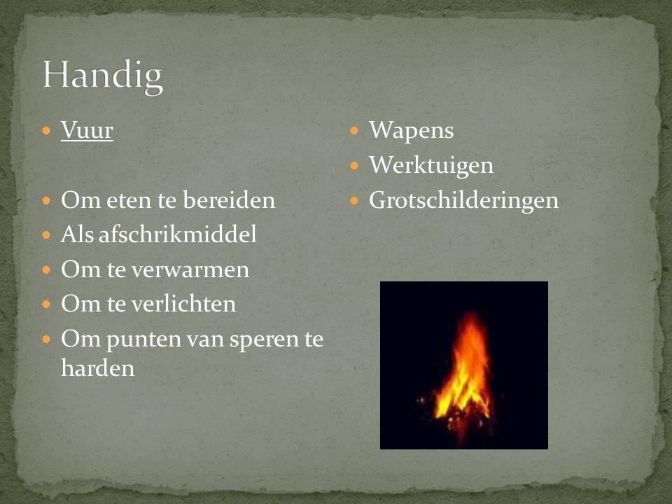 Vuur Om eten te bereiden Als afschrikmiddel Om te verwarmen Om te verlichten Om punten van speren te harden Wapens Werktuigen Grotschilderingen