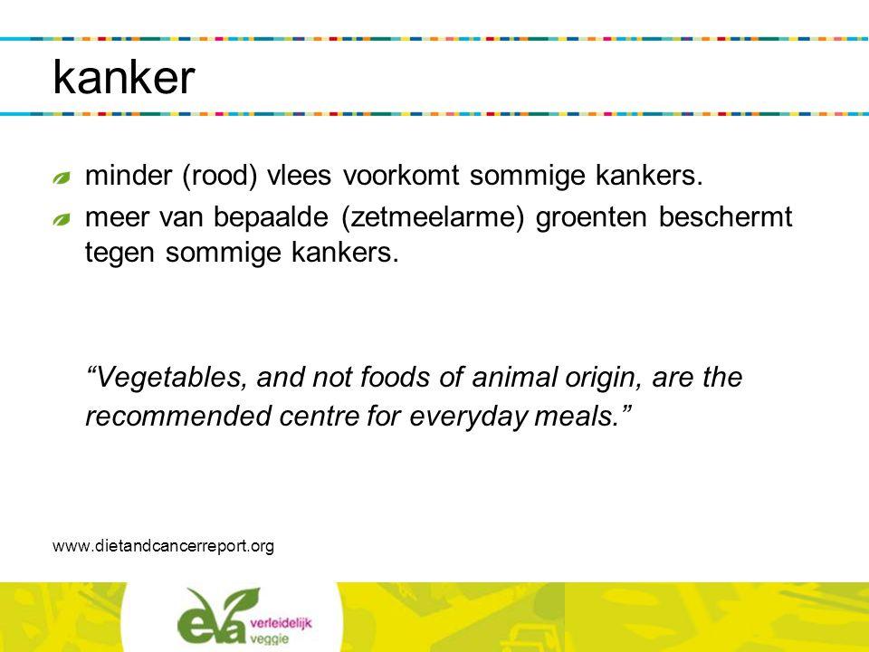 """kanker minder (rood) vlees voorkomt sommige kankers. meer van bepaalde (zetmeelarme) groenten beschermt tegen sommige kankers. """"Vegetables, and not fo"""