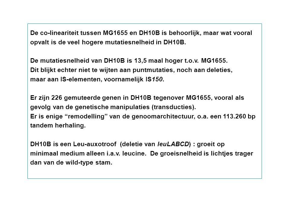 De co-lineariteit tussen MG1655 en DH10B is behoorlijk, maar wat vooral opvalt is de veel hogere mutatiesnelheid in DH10B. De mutatiesnelheid van DH10