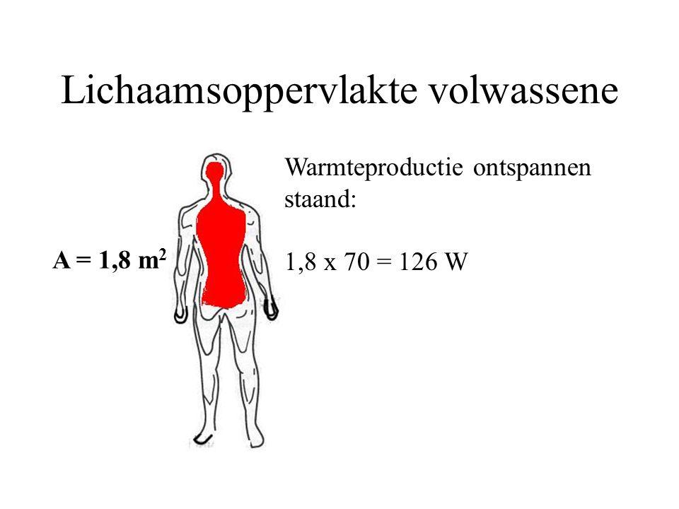 Lichaamsoppervlakte volwassene A = 1,8 m 2 Warmteproductie ontspannen staand: 1,8 x 70 = 126 W