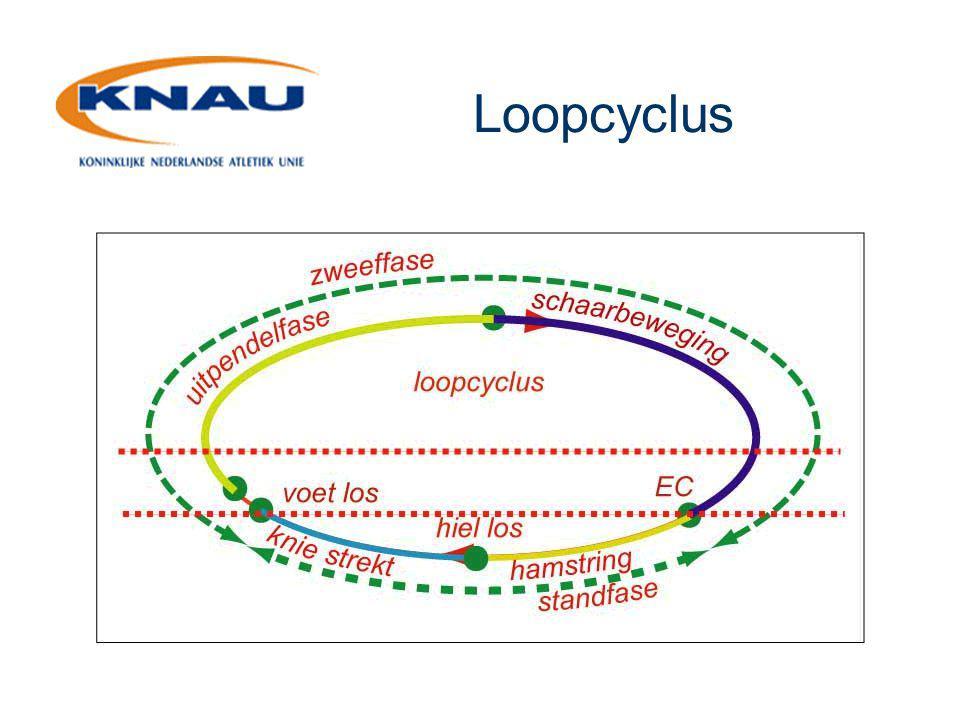Aandachtspunten I  De voet gedurende de hele loopcyclus in neutrale stand  Voorspanning in het landingsbeen vlak voor de landing