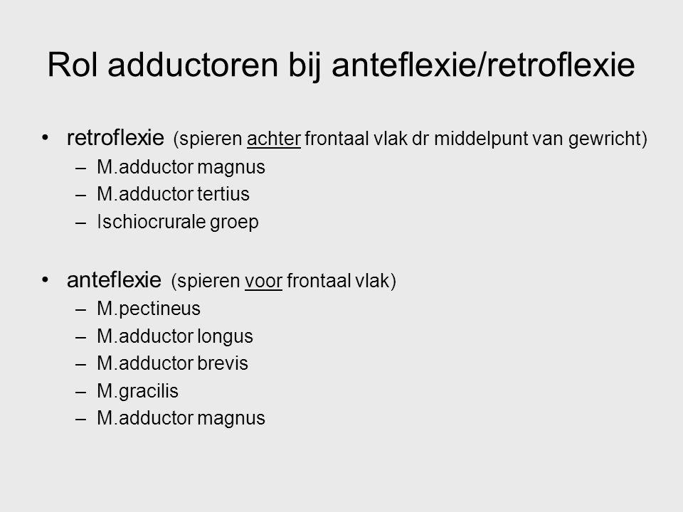 Rol adductoren bij anteflexie/retroflexie retroflexie (spieren achter frontaal vlak dr middelpunt van gewricht) –M.adductor magnus –M.adductor tertius