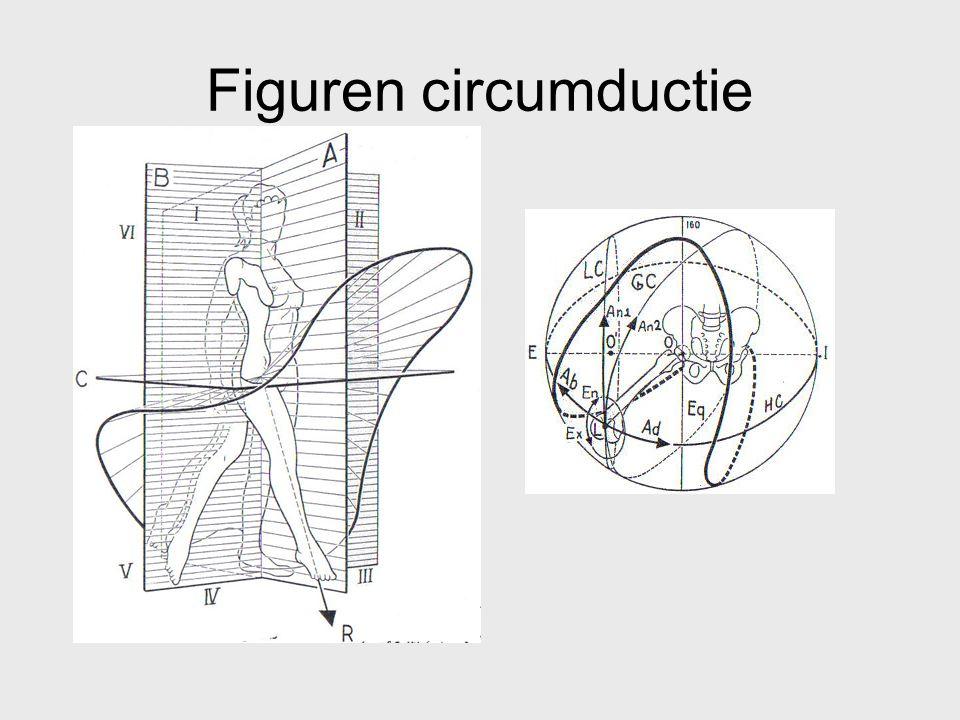 Figuren circumductie