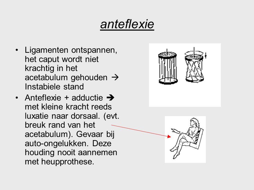 anteflexie Ligamenten ontspannen, het caput wordt niet krachtig in het acetabulum gehouden  Instabiele stand Anteflexie + adductie  met kleine krach