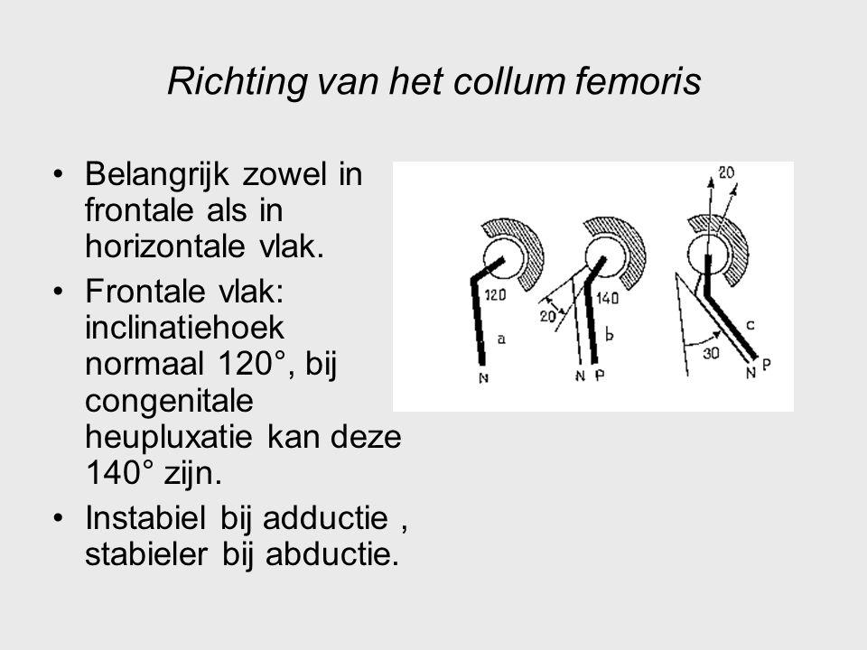 Richting van het collum femoris Belangrijk zowel in frontale als in horizontale vlak. Frontale vlak: inclinatiehoek normaal 120°, bij congenitale heup