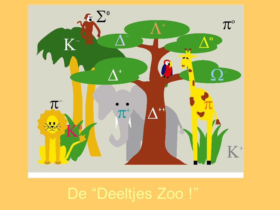                De Deeltjes Zoo !