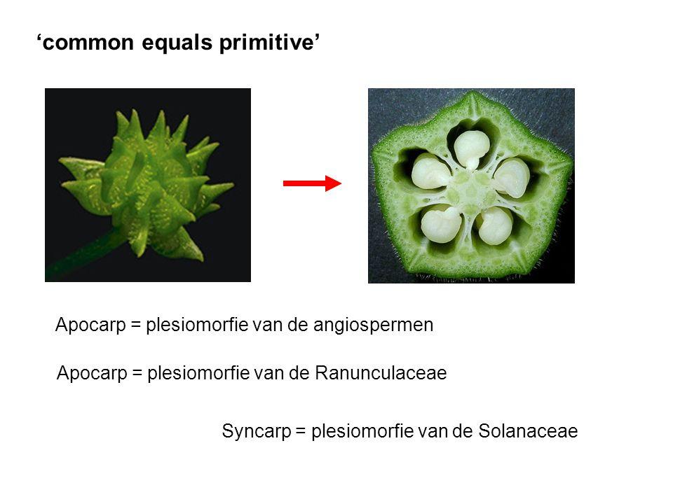 'common equals primitive' Apocarp = plesiomorfie van de angiospermen Apocarp = plesiomorfie van de Ranunculaceae Syncarp = plesiomorfie van de Solanac