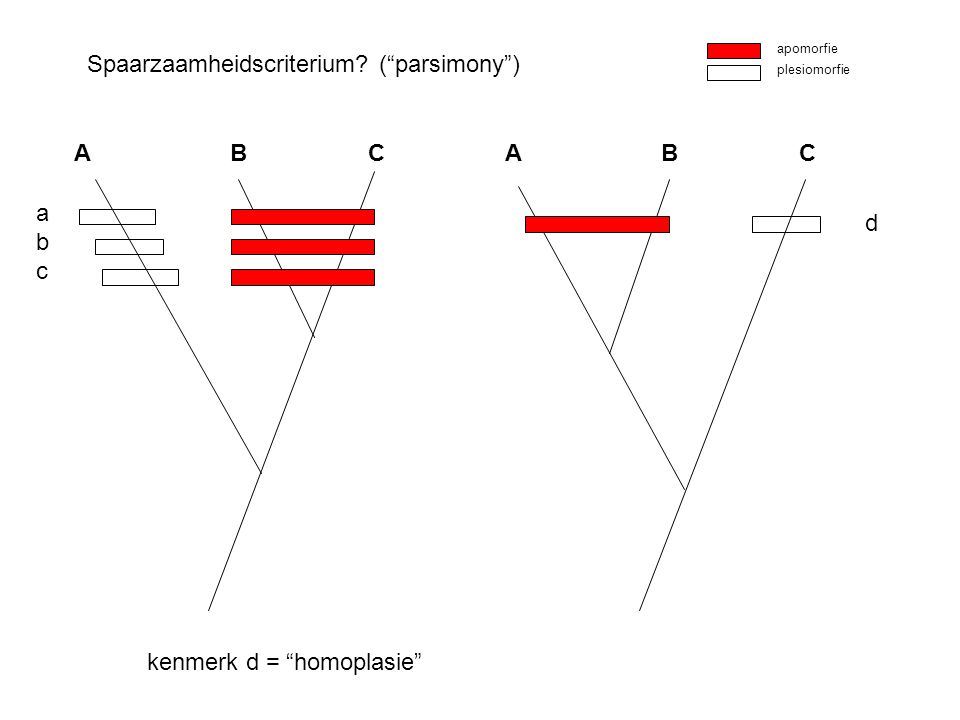 "Spaarzaamheidscriterium? (""parsimony"") A B C apomorfie plesiomorfie A B C abcabc d kenmerk d = ""homoplasie"""