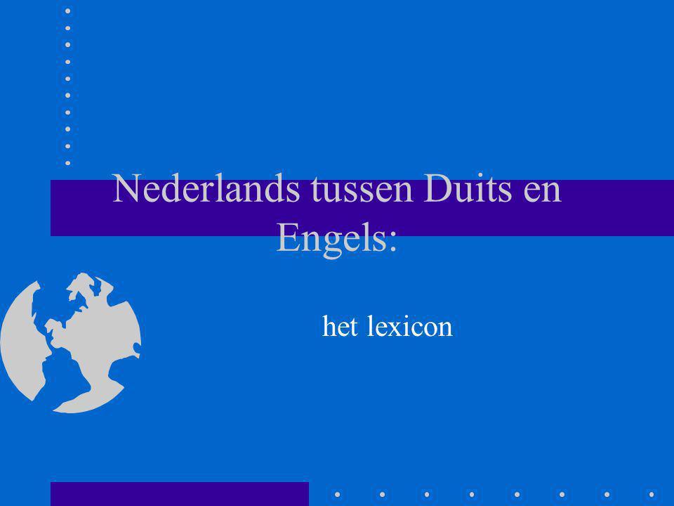 Nederlands tussen Duits en Engels: het lexicon