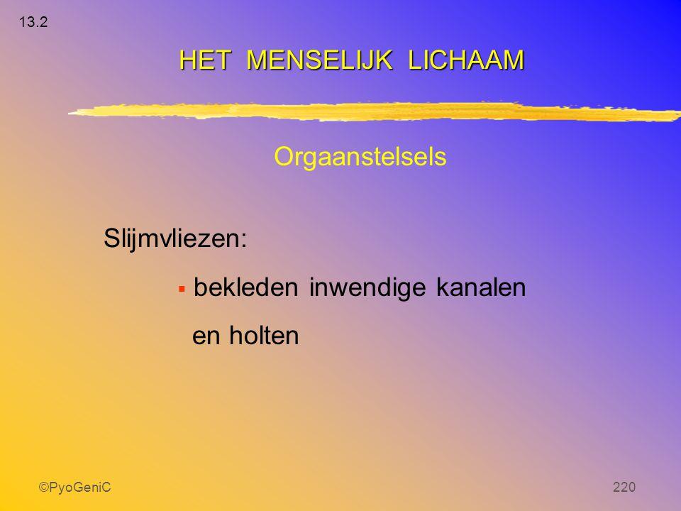 ©PyoGeniC220 Orgaanstelsels Slijmvliezen:  bekleden inwendige kanalen en holten HET MENSELIJK LICHAAM 13.2