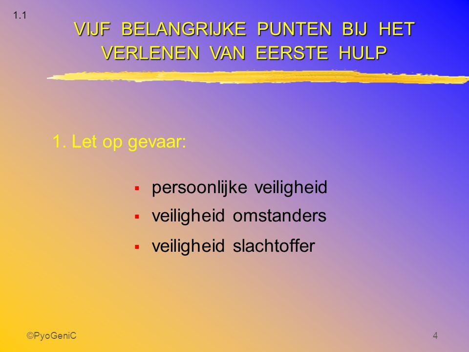 ©PyoGeniC4 1. Let op gevaar:  persoonlijke veiligheid  veiligheid omstanders  veiligheid slachtoffer VIJF BELANGRIJKE PUNTEN BIJ HET VERLENEN VAN E