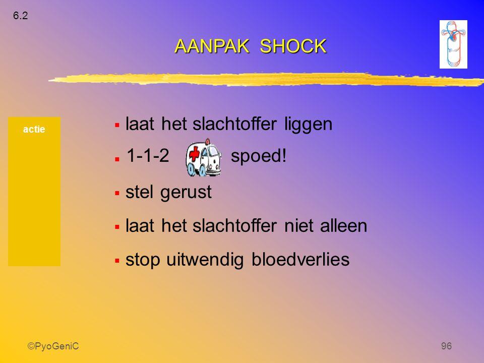 ©PyoGeniC96  laat het slachtoffer liggen   stel gerust  laat het slachtoffer niet alleen  stop uitwendig bloedverlies AANPAK SHOCK actie 1-1-2 6.