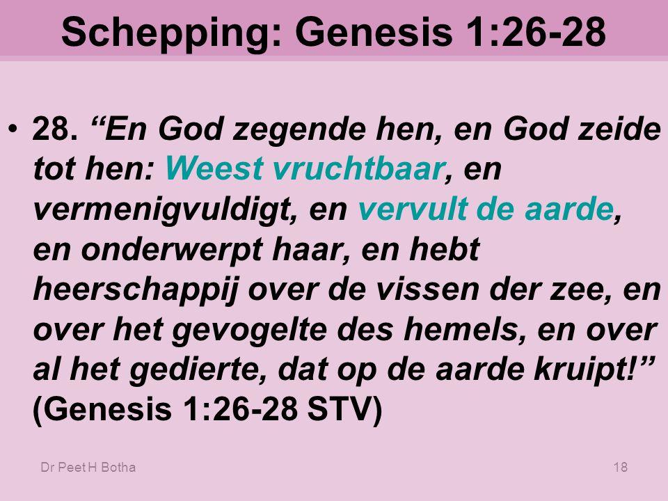 Dr Peet H Botha17 Schepping: Genesis 1:26-28 26.
