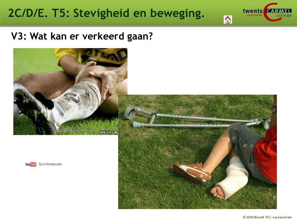 © 2009 Biosoft TCC - Lyceumstraat 2C/D/E. T5: Stevigheid en beweging. V3: Wat kan er verkeerd gaan? Sportblessures