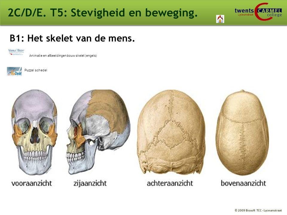 © 2009 Biosoft TCC - Lyceumstraat 2C/D/E. T5: Stevigheid en beweging. Puzzel schedel Animatie en afbeeldingen bouw skelet (engels) B1: Het skelet van