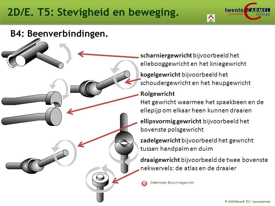 © 2009 Biosoft TCC - Lyceumstraat 2D/E. T5: Stevigheid en beweging. B4: Beenverbindingen. scharniergewricht bijvoorbeeld het ellebooggewricht en het k