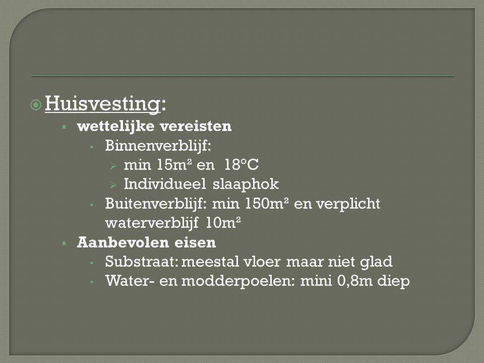  Huisvesting:  wettelijke vereisten Binnenverblijf:  min 15m² en 18°C  Individueel slaaphok Buitenverblijf: min 150m² en verplicht waterverblijf 1