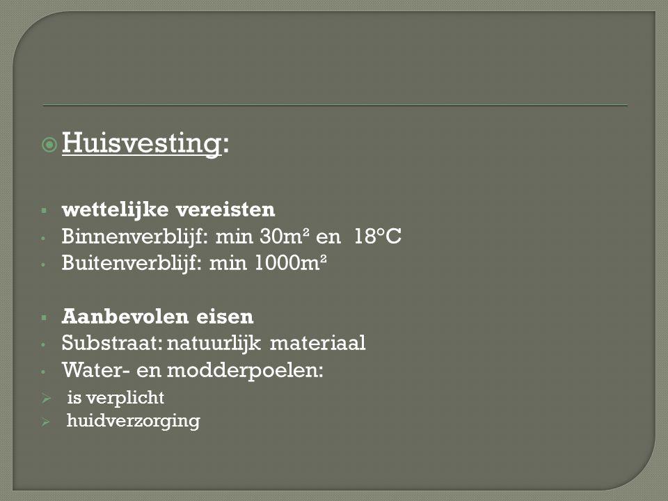  Huisvesting:  wettelijke vereisten Binnenverblijf: min 30m² en 18°C Buitenverblijf: min 1000m²  Aanbevolen eisen Substraat: natuurlijk materiaal W