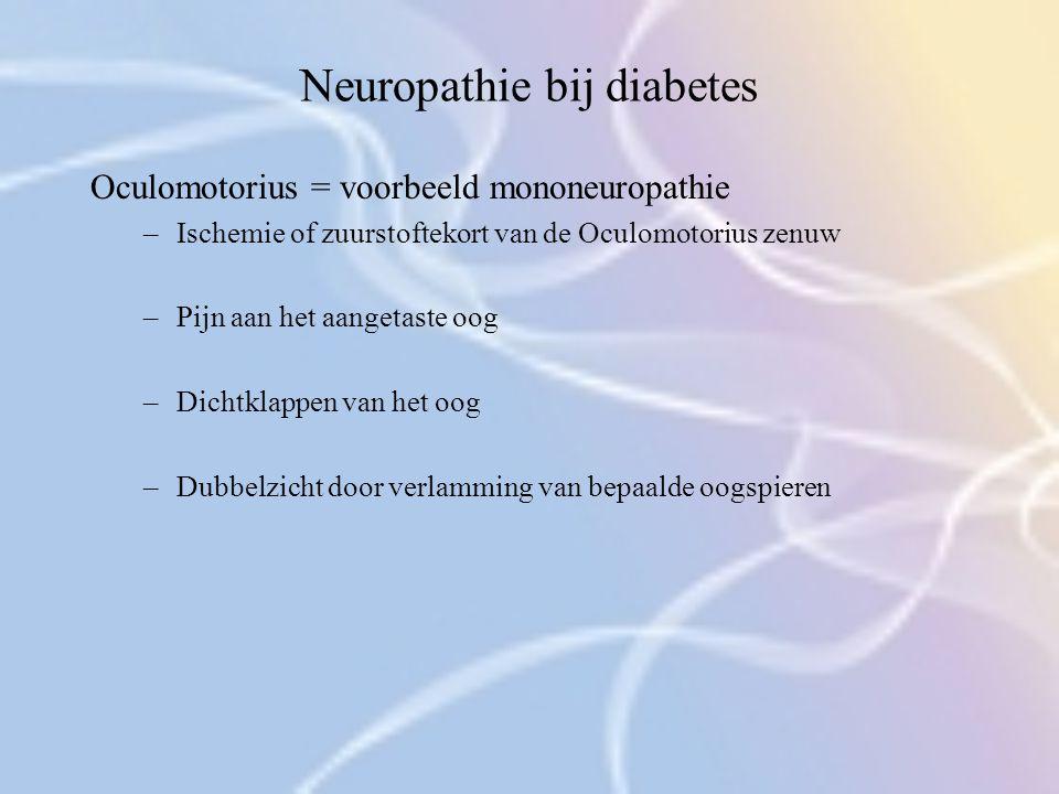 Neuropathie bij diabetes Oculomotorius = voorbeeld mononeuropathie –Ischemie of zuurstoftekort van de Oculomotorius zenuw –Pijn aan het aangetaste oog