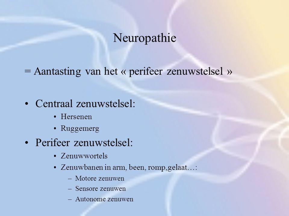 Neuropathie = Aantasting van het « perifeer zenuwstelsel » Centraal zenuwstelsel: Hersenen Ruggemerg Perifeer zenuwstelsel: Zenuwwortels Zenuwbanen in