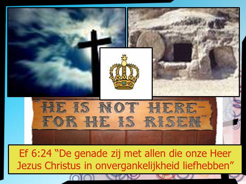 """Ef 6:24 """"De genade zij met allen die onze Heer Jezus Christus in onvergankelijkheid liefhebben"""""""