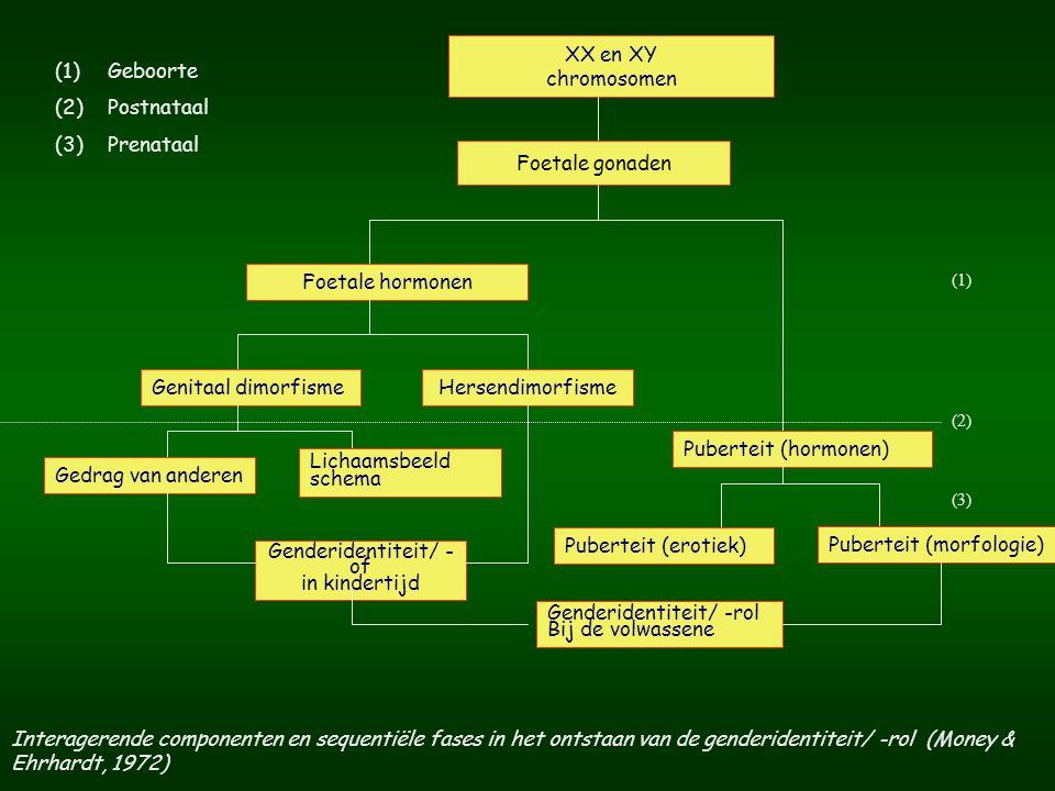GENDERIDENTITEITSSTOORNIS (2) B.