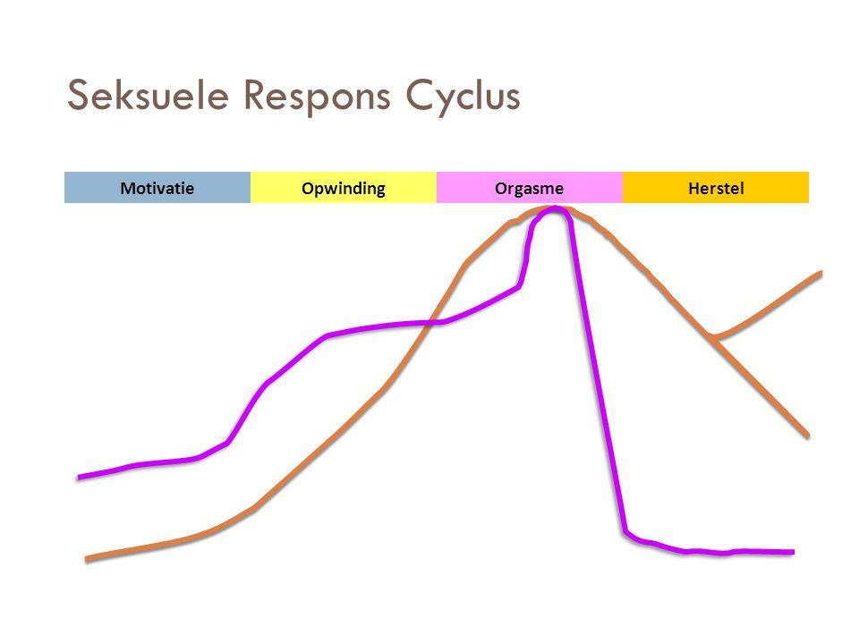 Seksuele Respons Cyclus MotivatieOpwindingHerstelOrgasme