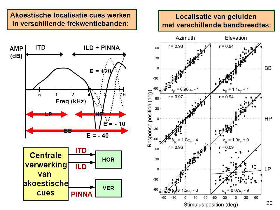 .5 124816 ITD ILD + PINNA AMP (dB) Freq (kHz) E = - 40 E = - 10 E = +20 Akoestische localisatie cues werken in verschillende frekwentiebanden: Localis