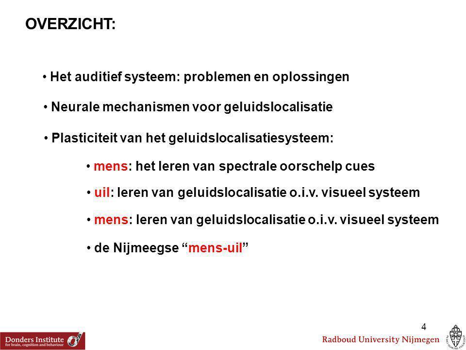 4 OVERZICHT: Het auditief systeem: problemen en oplossingen Neurale mechanismen voor geluidslocalisatie Plasticiteit van het geluidslocalisatiesysteem