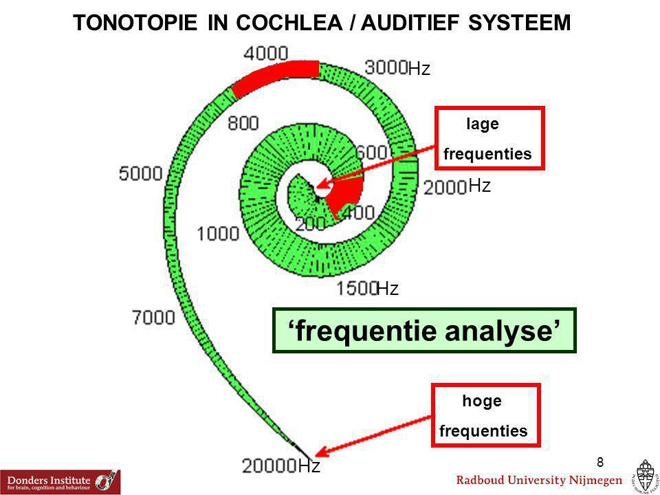 STUDIE 3: Logische vervolgvraag: Staat geluidslocalisatie bij de mens ook onder invloed van het visueel systeem.