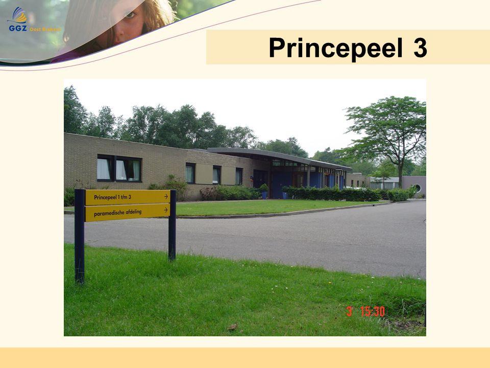 Princepeel 3