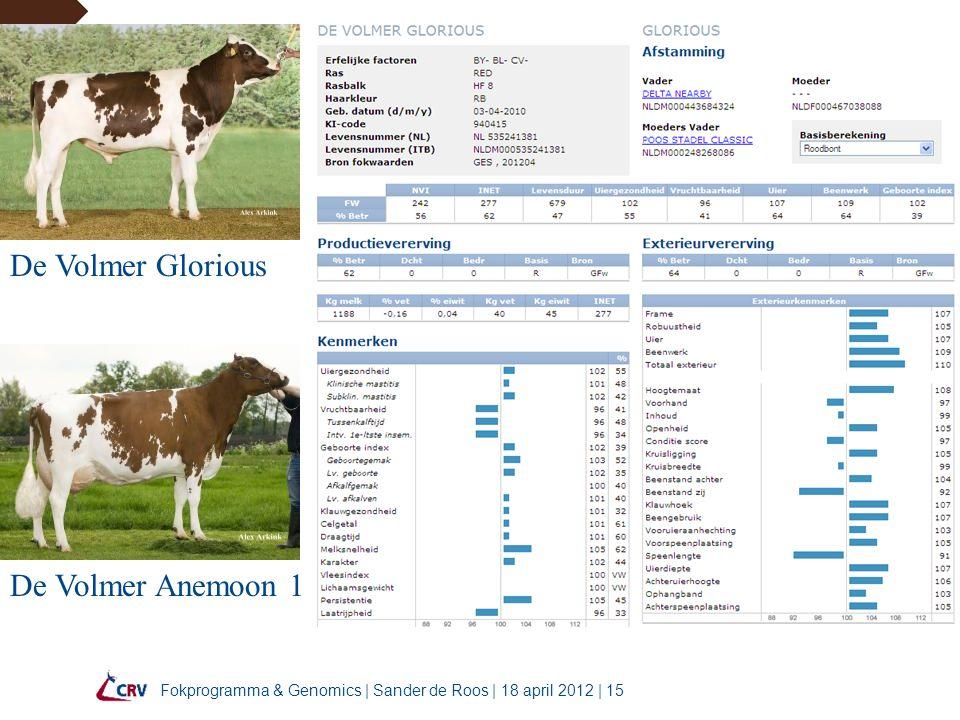 Fokprogramma & Genomics | Sander de Roos | 18 april 2012 | 15 De Volmer Glorious De Volmer Anemoon 1