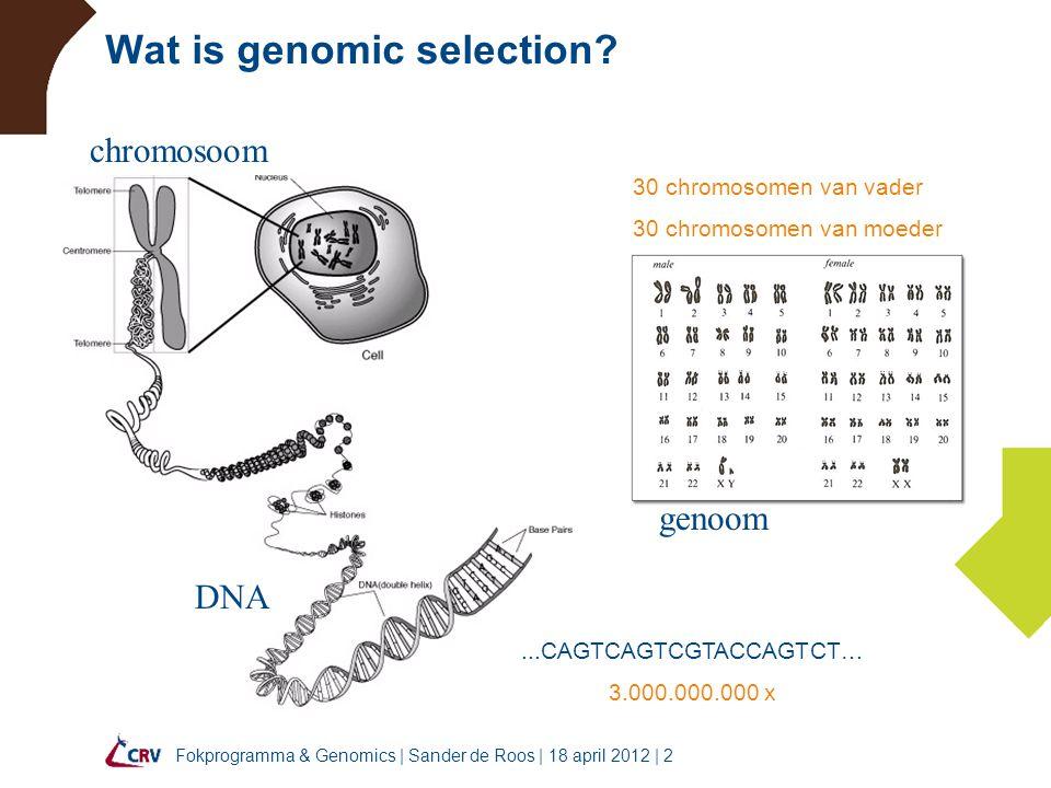 Fokprogramma & Genomics   Sander de Roos   18 april 2012   23 Fokprogramma Selectie binnen 3 weken –haarzakjes of neusswaps  veehouder –DNA monster  CRV  Luik –genotypering in Luik (1 week) –genomic fokwaardeschatting (wekelijks) –selectie  informeren veehouder 150 dieren per week Ophalen stieren op 3 maanden lft
