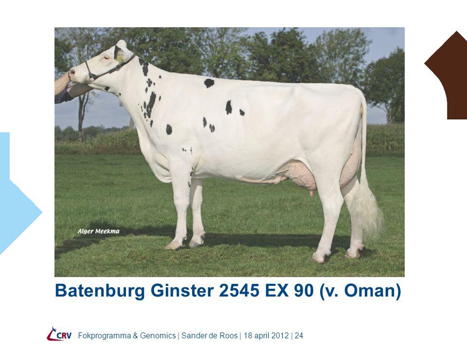 Fokprogramma & Genomics | Sander de Roos | 18 april 2012 | 24 Batenburg Ginster 2545 EX 90 (v.