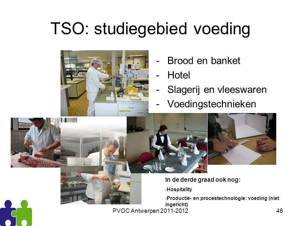 PVOC Antwerpen 2011-201246 TSO: studiegebied voeding -Brood en banket -Hotel -Slagerij en vleeswaren -Voedingstechnieken In de derde graad ook nog: -H