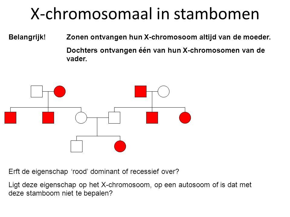 X-chromosomaal in stambomen Belangrijk! Zonen ontvangen hun X-chromosoom altijd van de moeder. Dochters ontvangen één van hun X-chromosomen van de vad