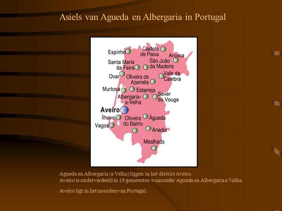 Agueda en Albergaria (a Velha) liggen in het district Aveiro. Aveiro is onderverdeeld in 19 gemeenten waaronder Agueda en Albergaria a Valha. Aveiro l